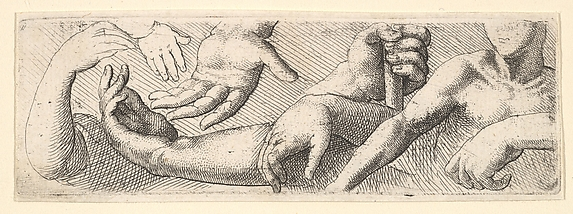 Hands and Arms, from the series of Anatomical Drawings