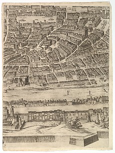 Plan of the City of Rome. Part 9 with Piazza Navona, the Campo di Fiore and the Sant' Onofrio (left bank)