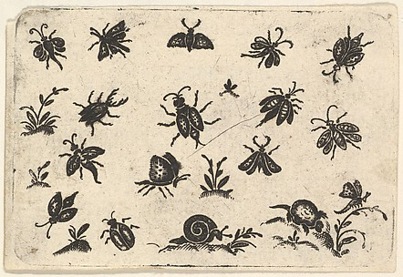 Small Motifs of Insects and Plants