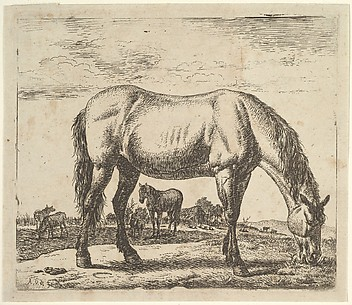 Grazing Horse, from Different Animals
