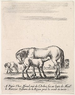 Mare Suckling a Foal, from Divers exercices de cavalerie