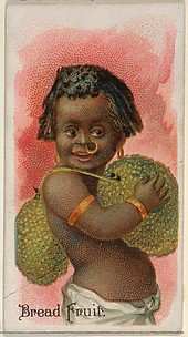 Bread Fruit, from the Fruits series (N12) for Allen & Ginter Cigarettes Brands