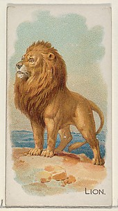 Lion, from the Quadrupeds series (N21) for Allen & Ginter Cigarettes