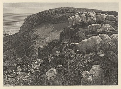 On the Hill Side (Strayed Sheep)