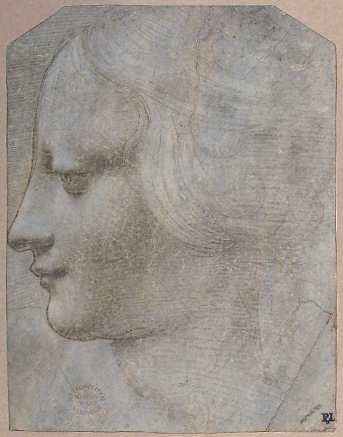 The Head of a Woman in Profile Facing Left