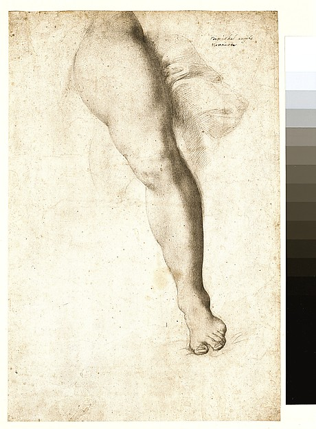 Study of a Left Leg and Drapery