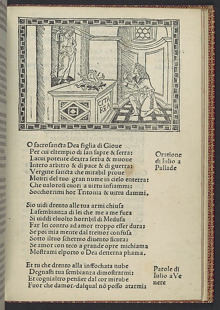 La Giostra di Giuliano de Medici...