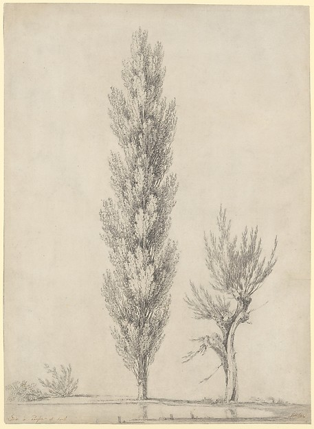 Landscape with a Poplar and a Willow Tree at the Edge of a Pond