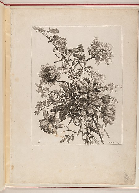 Livre de Toutes Sortes De Fleurs D'apres Nature