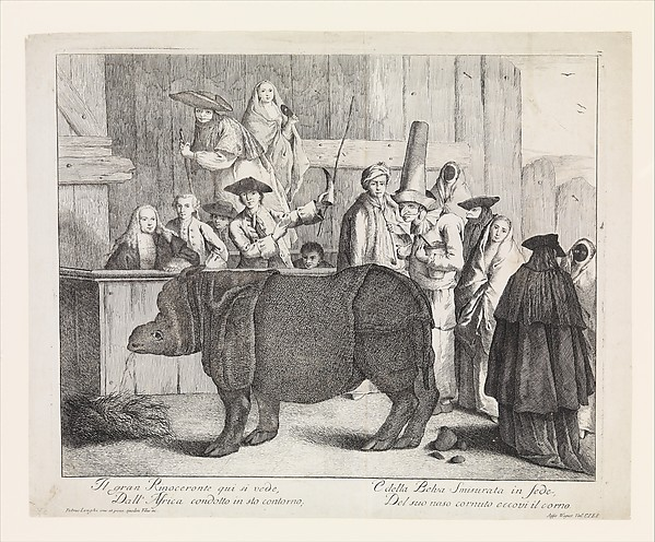 Fascinating Historical Picture of Alessandro Longhi with The Rhinoceros in 1751