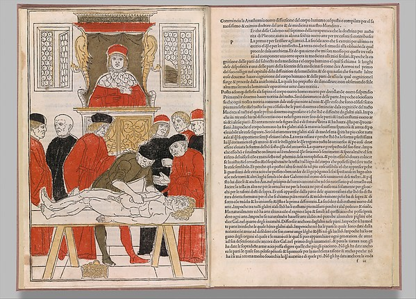 Fascinating Historical Picture of  with Fasciculo di medicina on 2/5/1493