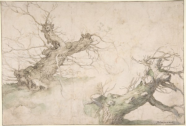 Studies of Two Pollard Willows; Verso: Wide Landscape Prospect