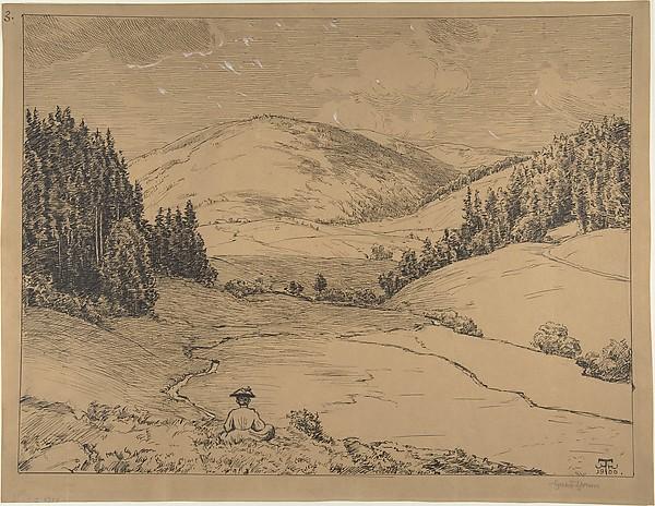 View in the Black Forest (Valley near St. Blasien)