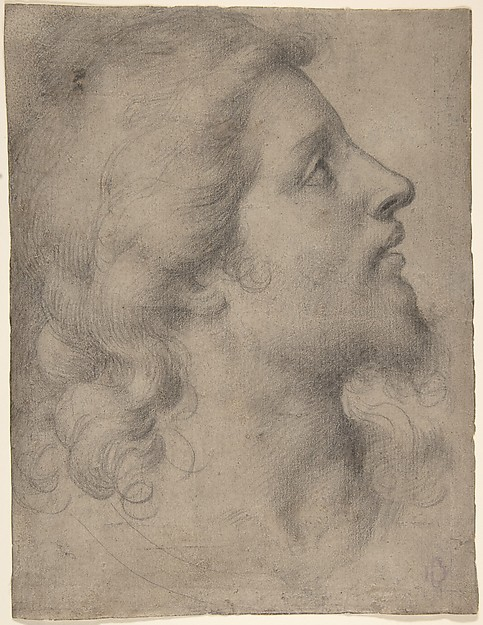Head of a Bearded, Young Man in Profile Facing Right