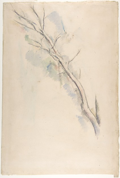 Studies of a tree (recto and verso)