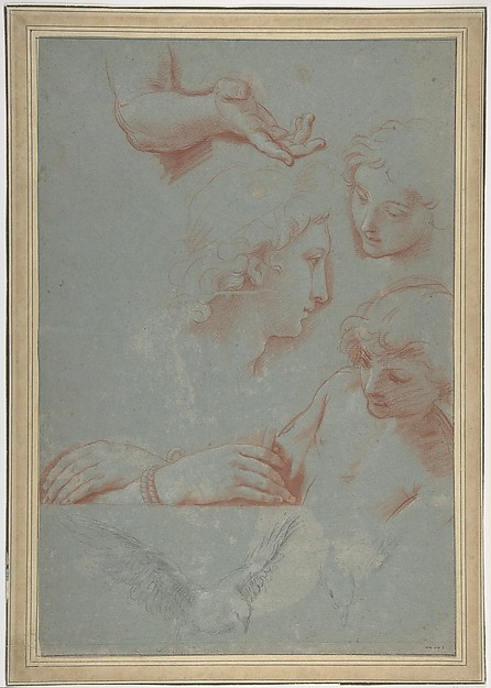 Fascinating Historical Picture of Luigi Garzi with Sheet of Studies| Heads Hands and Doves in 1638