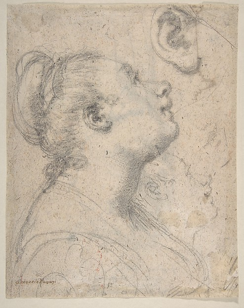 Fascinating Historical Picture of Gregorio Pagani with The Head and Shoulders of a Woman in Profile; Separate Studies of Her Head and Ear (recto); Fragment in 1592