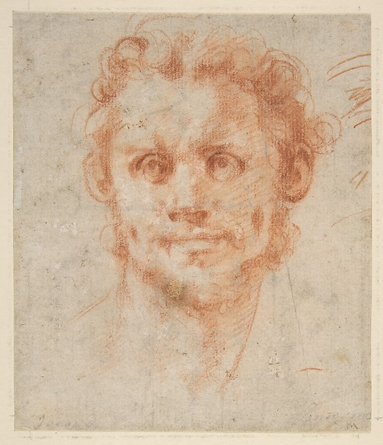 Study of a Man's Head