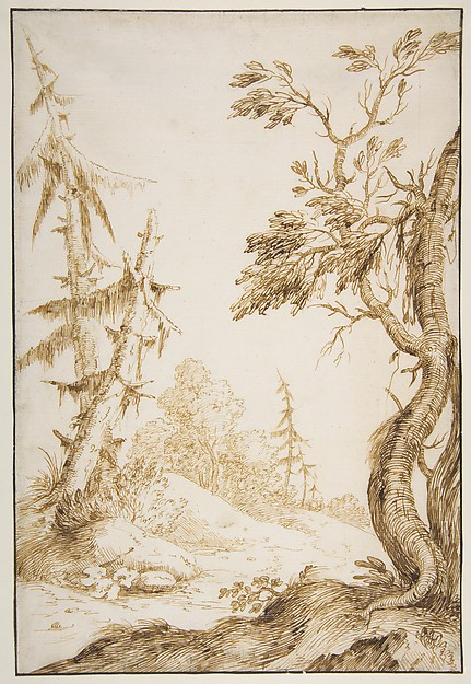 Clearing in a Wooded Landscape