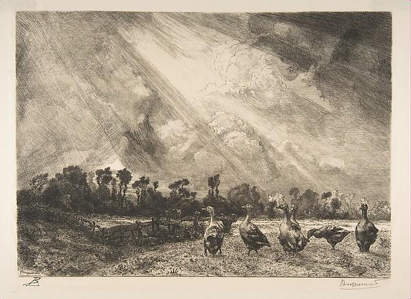 The Storm Cloud