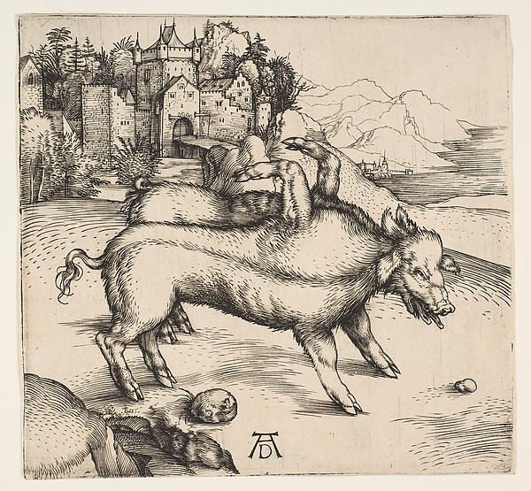 Fascinating Historical Picture of Albrecht Drer with The Monstrous Pig of Landser in 1496