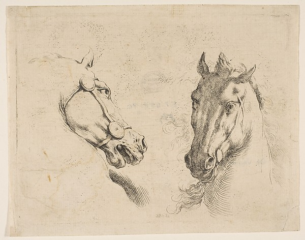 Two Horse Heads
