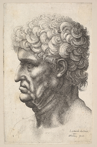 Head of a man. left profile, with thick curly hair