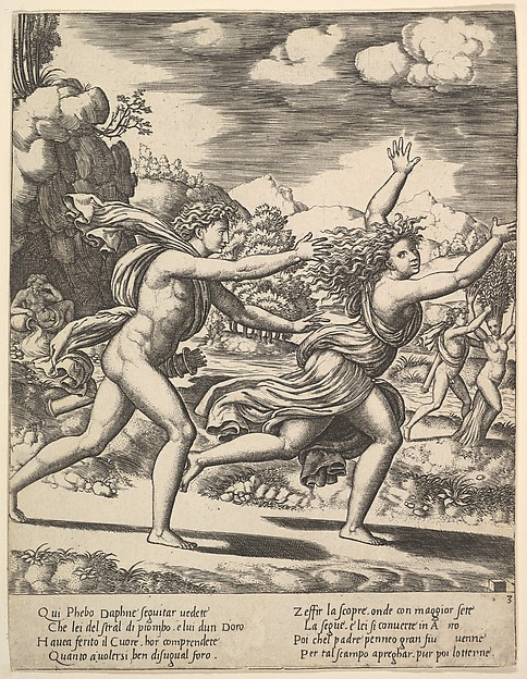 Daphne Flees Apollo and is Transformed into a Laurel from The Story of Apollo and Daphne