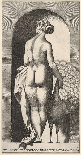 Plate 4: Juno standing in a niche, viewed from behind, with a peacock at her right, from a series of mythological gods and goddesses