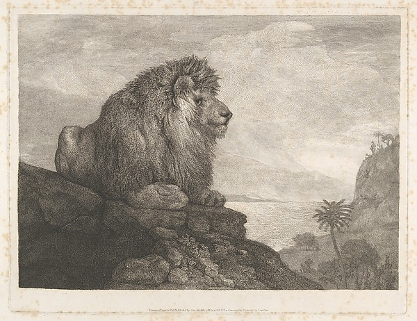 Fascinating Historical Picture of George Stubbs with A Lion (A Lion Resting on a Rock) on 5/1/1788