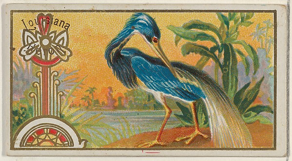 Louisiana Heron, from the Game Birds series (N13) for Allen & Ginter Cigarettes Brands