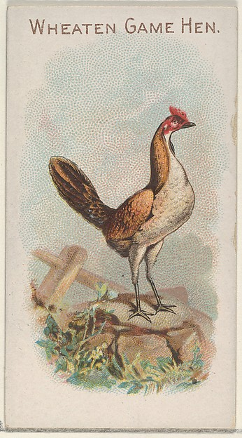 Wheaten Game Hen, from the Prize and Game Chickens series (N20) for Allen & Ginter Cigarettes