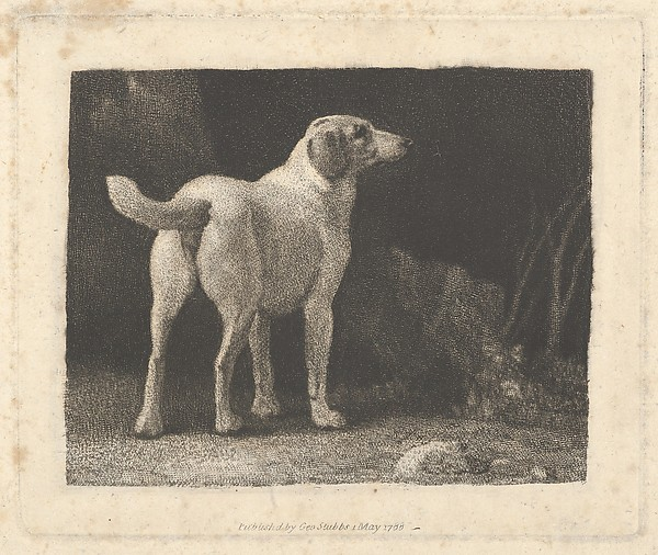 Fascinating Historical Picture of George Stubbs with Dog (A Foxhound Viewed from Behind) on 5/1/1788