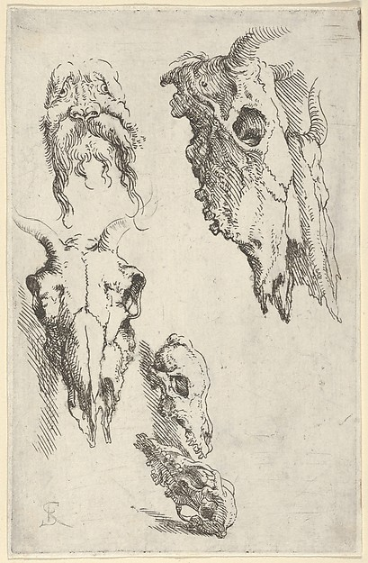 "Three Ox Skulls, Two Horse Skulls and a Grotesque Head - Study for ""Democritus in Meditation"""