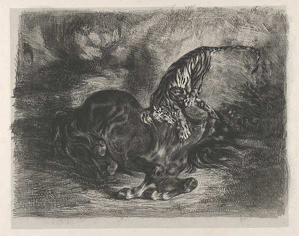 Wild Horse Felled by a Tiger