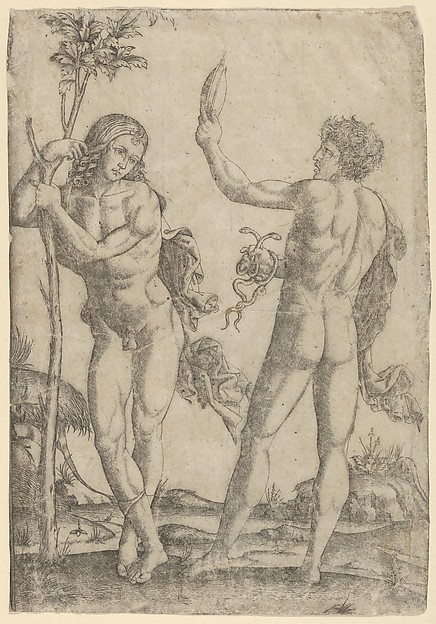 Fascinating Historical Picture of Marcantonio Raimondi with A young naked man standing at left leaning on the trunk another seen from behind holding two snake in 1510