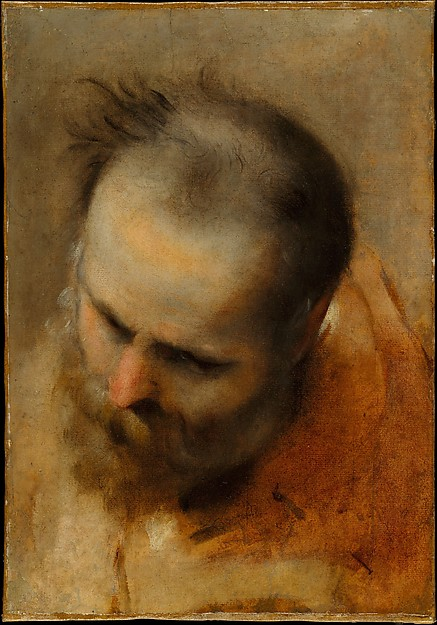 Head of a Bearded Man Looking to Lower Left (Nicodemus)