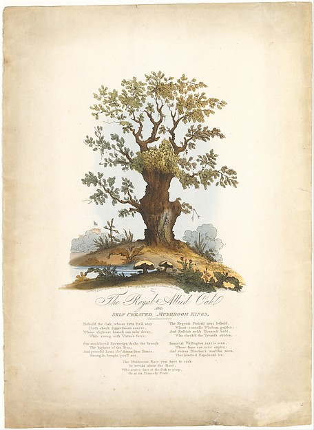Fascinating Historical Picture of William Heath with The Royal Allied Oak and Self-Created Mushroom Kings on 5/29/1815