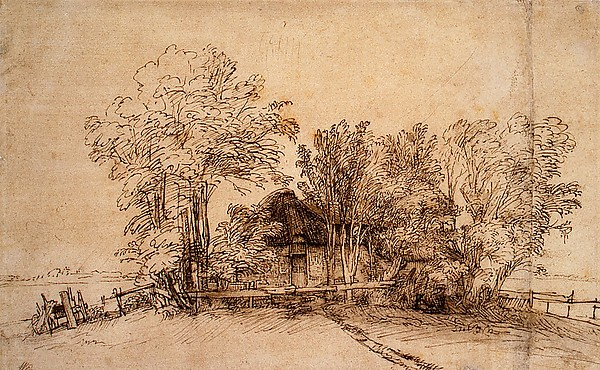 Cottage among Trees