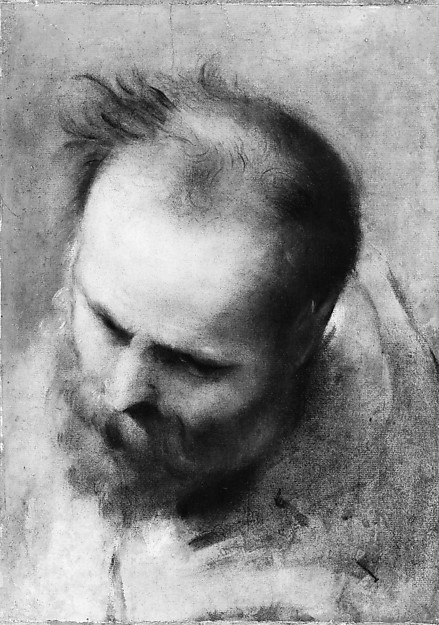 Head of a Bearded Man Looking to Lower Left