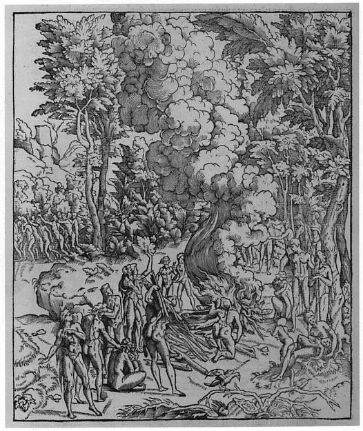 Architecture, ou, Art de bien bastir de Marc Vitruve Pollion, autheur romain antique; mis de latin en francoys par Ian Martin