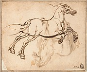 Study of a Horse (recto); Study of a Standing Horse (verso)