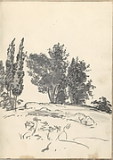 Trees, Bushes and Vegetation (Smaller Italian Sketchbook, leaf 40 recto)
