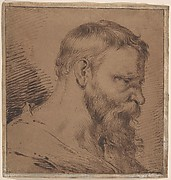 Bearded Head, Looking Down to the Right