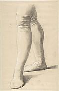 Study of Legs