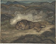 Lion Sleeping