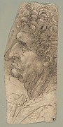 Head of a Man in Profile Facing to the Left