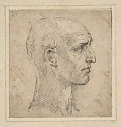 Head of a Man in Profile to Right