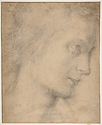 Head of a Youth (recto)