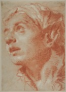 Head of a Young Man in Three-Quarter View.